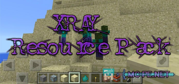 XRAY Resource Pack