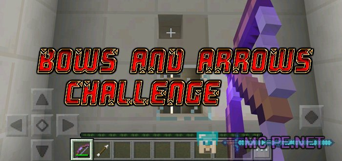 Bows and Arrows Challenge
