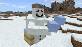 Snowgrunt