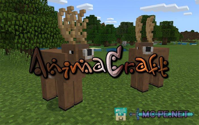 AnimaCraft