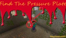 Find The Pressure Plate