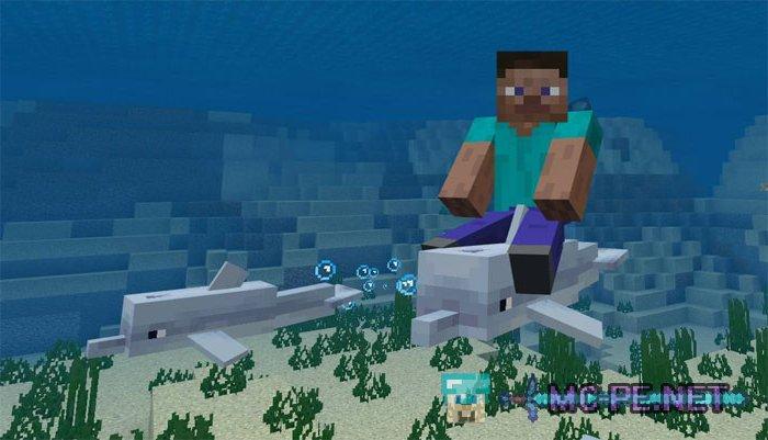 Dolphin Riding › Addons › MCPE - Minecraft Pocket Edition